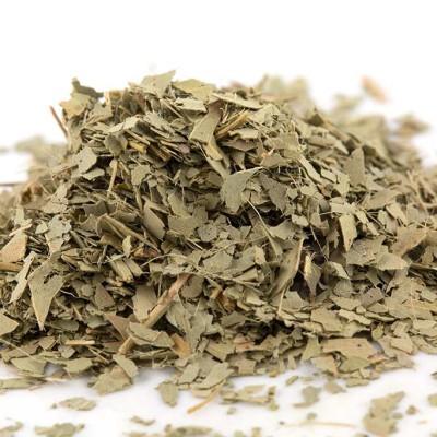 Mad Hat Tea | Eucalyptus